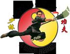 Florida Wushu Kungfu Academy Logo
